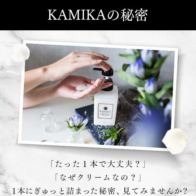 KAMIKA1本にぎゅっと詰まった秘密、見てみませんか?